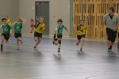 2017-03-04 Handball Bessieres 002