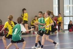 2017-03-04 Handball Bessieres 010