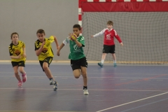 2017-03-04 Handball Bessieres 028