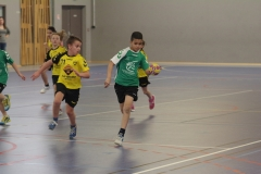 2017-03-04 Handball Bessieres 030