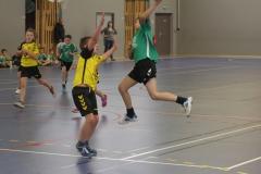 2017-03-04 Handball Bessieres 032