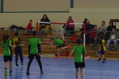 2018-05-05 Handball 07
